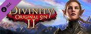Divinity: Original Sin 2 - Divine Ascension System Requirements
