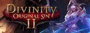 Divinity: Original Sin 2 Similar Games System Requirements