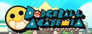 Dodgeball Academia System Requirements