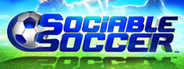 Sociable Soccer System Requirements