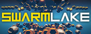 Swarmlake System Requirements