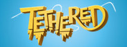 Tethered System Requirements