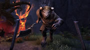 The Elder Scrolls Online - Horns of the Reach System Requirements