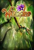Wander System Requirements