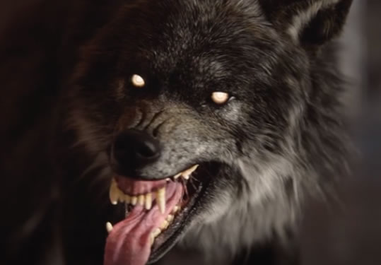 Werewolf: The Apocalypse - Earthblood System Requirements